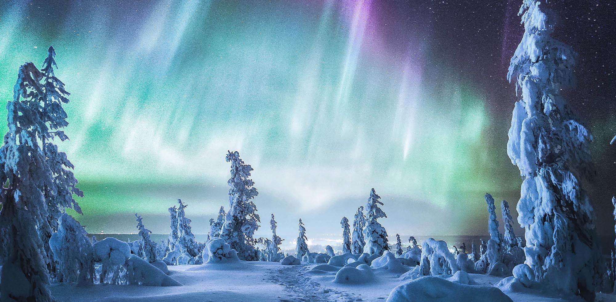 Wonders of the Arctic sky.